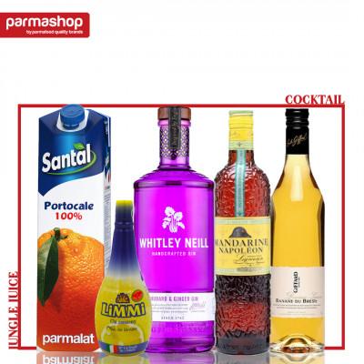 Pachet Cocktail Jungle Juice