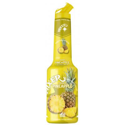 Pulpa Ananas 100% piure de fructe concentrat, Mixer, 1L