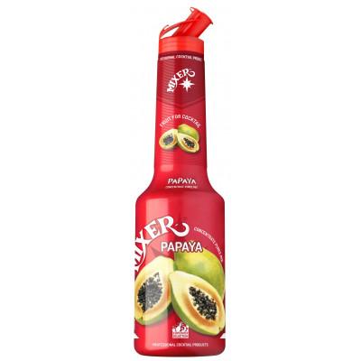 Pulpa Papaya 100% piure de fructe concentrat, Mixer, 1L